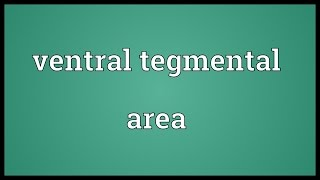 Ventral tegmental area Meaning