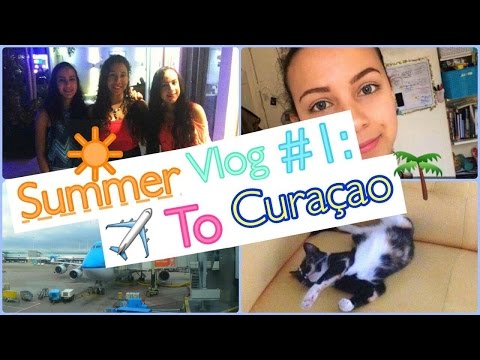 Summer Vlog #1: Going back home, Grumpy Cat & Beach Party