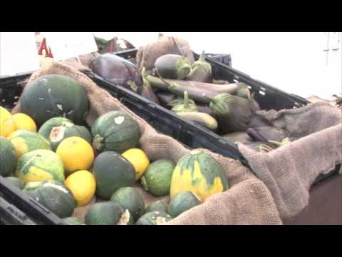 Phoenix non-profit organization promotes local food awareness