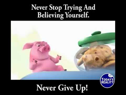 Never Give Up Funny Video