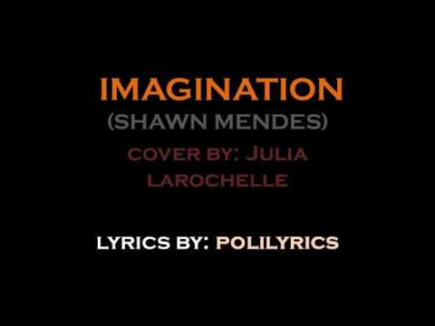 Imagination Shawn Mendes    Julia Larochelle