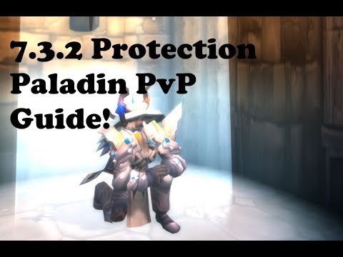 7.3.5 Protection Paladin PvP Guide