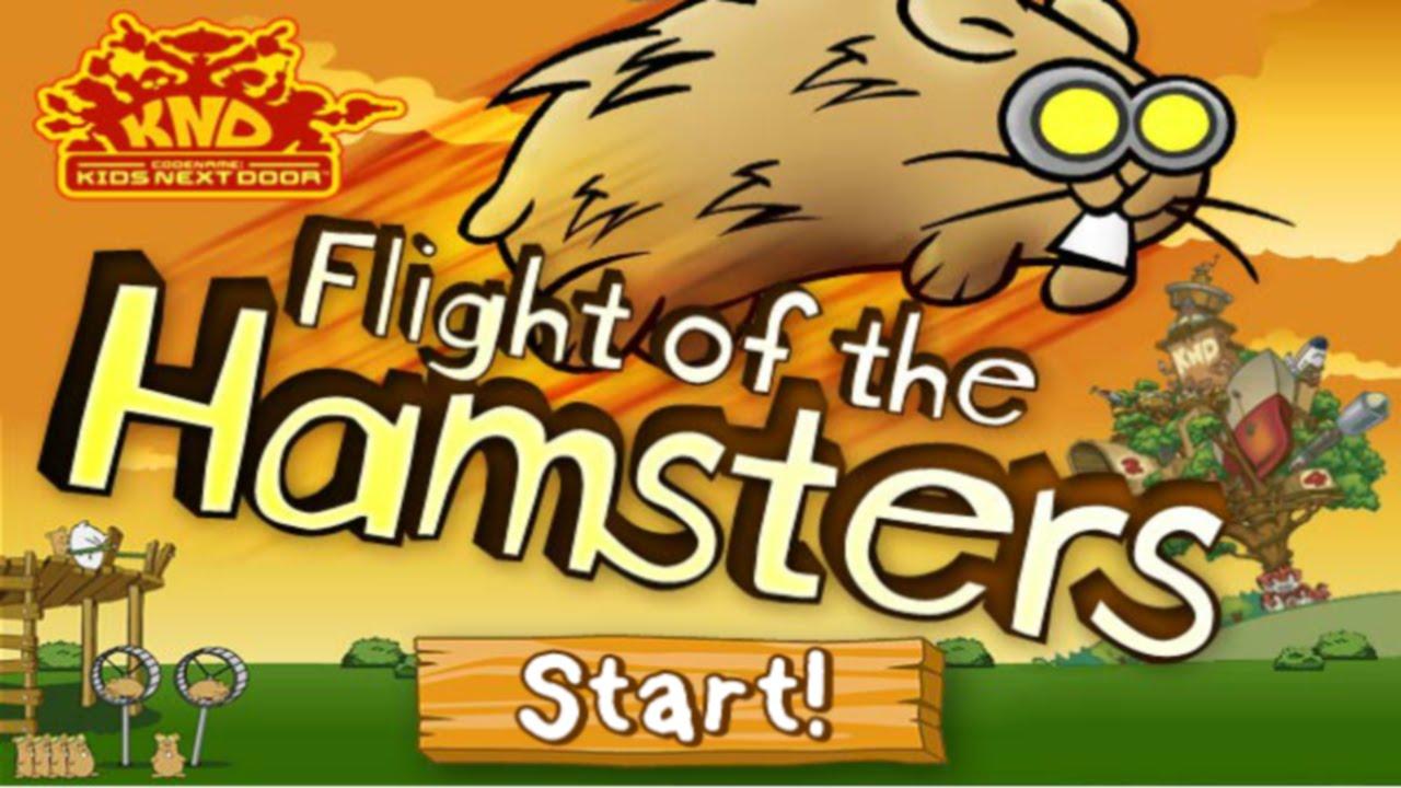 flight of the hamster 2