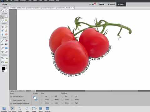 How to make text follow a path in photoshop elements