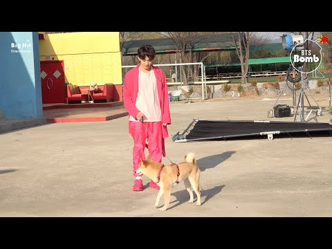 [BANGTAN BOMB] There's a Dog on the Set with BTS! - BTS (방탄소년단)