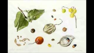 Anastazja mówi o tym jak wysiewać nasiona aby zebrały informację o naszych chorobach