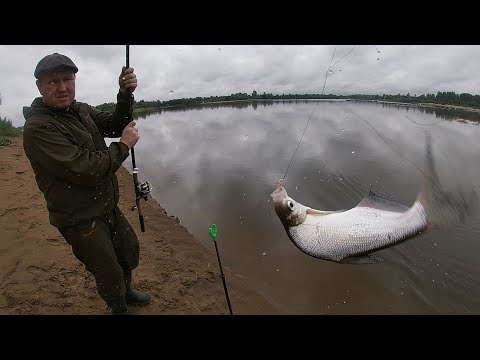 Рыбалка на фидер на реке Вятка в августе.