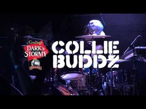 What A Feeling - Collie Buddz (Live at the Ocean Mist)