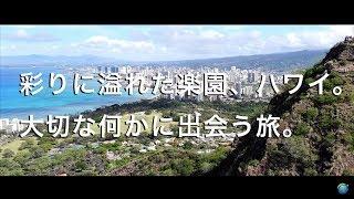 【彩りに溢れた楽園、ハワイ。大切な何かに出会う旅。】ハワイ旅行 作業用BGM だらだら街歩き 早朝のワイキキビーチ カラカウア通り カピオラニパーク ダイヤモンドヘッド Hawaii Waikiki