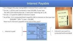 Define Common Liability Accounts - Interest Payable - Video Slide 9