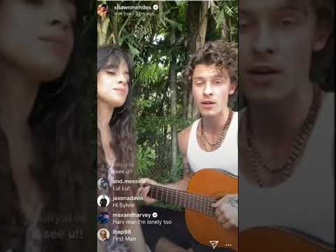 Shawn Mendes and Camila Cabello singing \