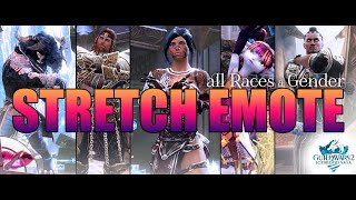 Guild Wars 2 Champions Power  | New Stretch Emote - All Genders and Races