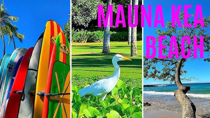 Hawaiian Style Cafe In Waimea Big Island Hawaii My Hawaii Travel Videos Youtube