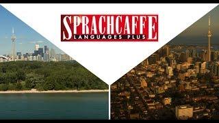 Welcome to Sprachcaffe Toronto! [Subtitles]