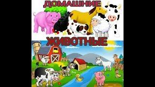 Домашние животные для детей: учим названия и голоса животных. Развивающие видео для детей.