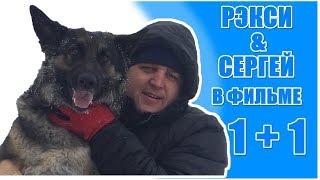 Инвалид и собака фильм 2017 года \ Ovcharka reksi i sergey