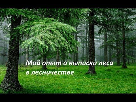 Мой опыт о бесплатной выписки леса в лесничестве на строительство хоз.построек