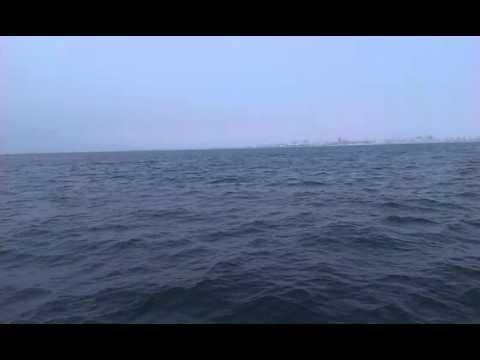Whales Watch 2 - Luanda Bay - Angola
