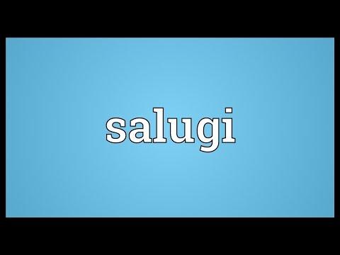 Header of salugi