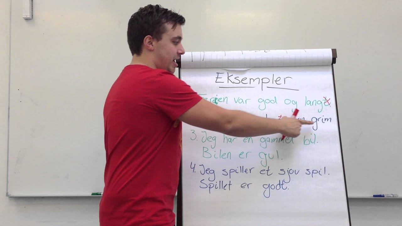 3.Substantiver i bestemt form med adjektiver - del 1