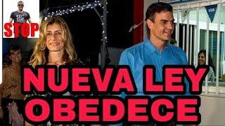 ¡DELIRANTE! SÁNCHEZ SACA LA LEY DE ALIMENTOS con multas de 600.000 €.
