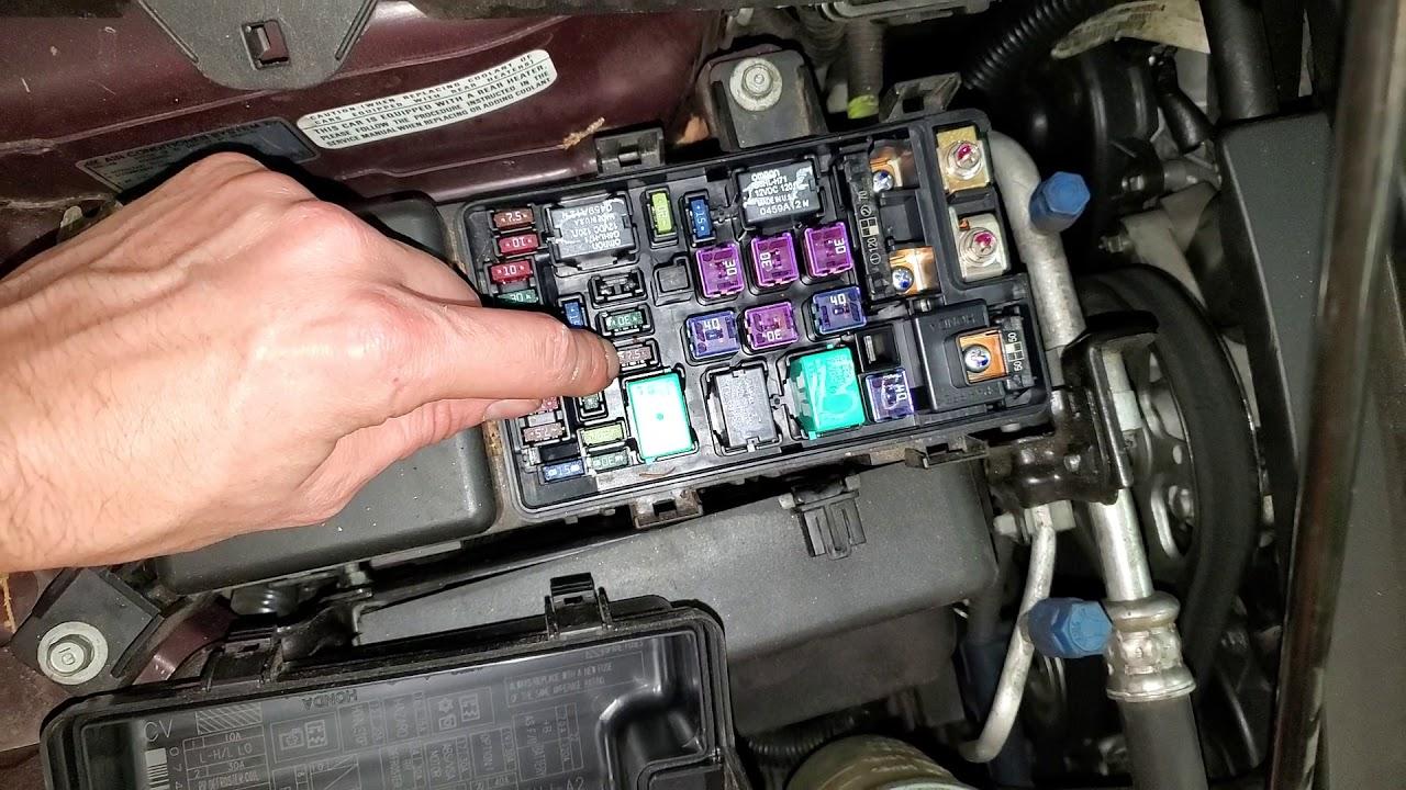 2010 Honda Odyssey Ac Fuse  U0026 Relay  Blower Motor Fuse  U0026 Relay Location