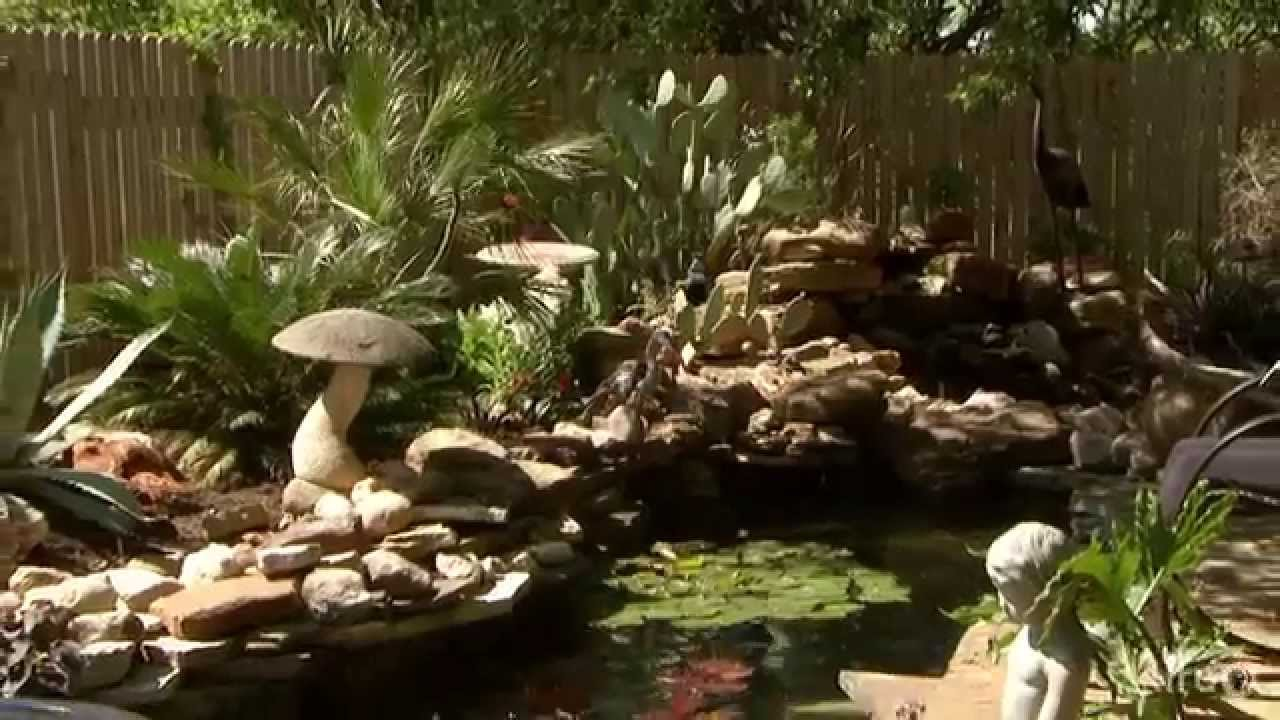 Make a splash with ponds |Central Texas Gardener - YouTube