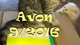 Распаковка заказа Avon по каталогу 9/2016. Котята помогают=^.^=