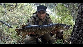 Рыбалка в Карелии с ночёвкой на щучьей реке дающей щуку Жареная картошка на костре под бальзам 18