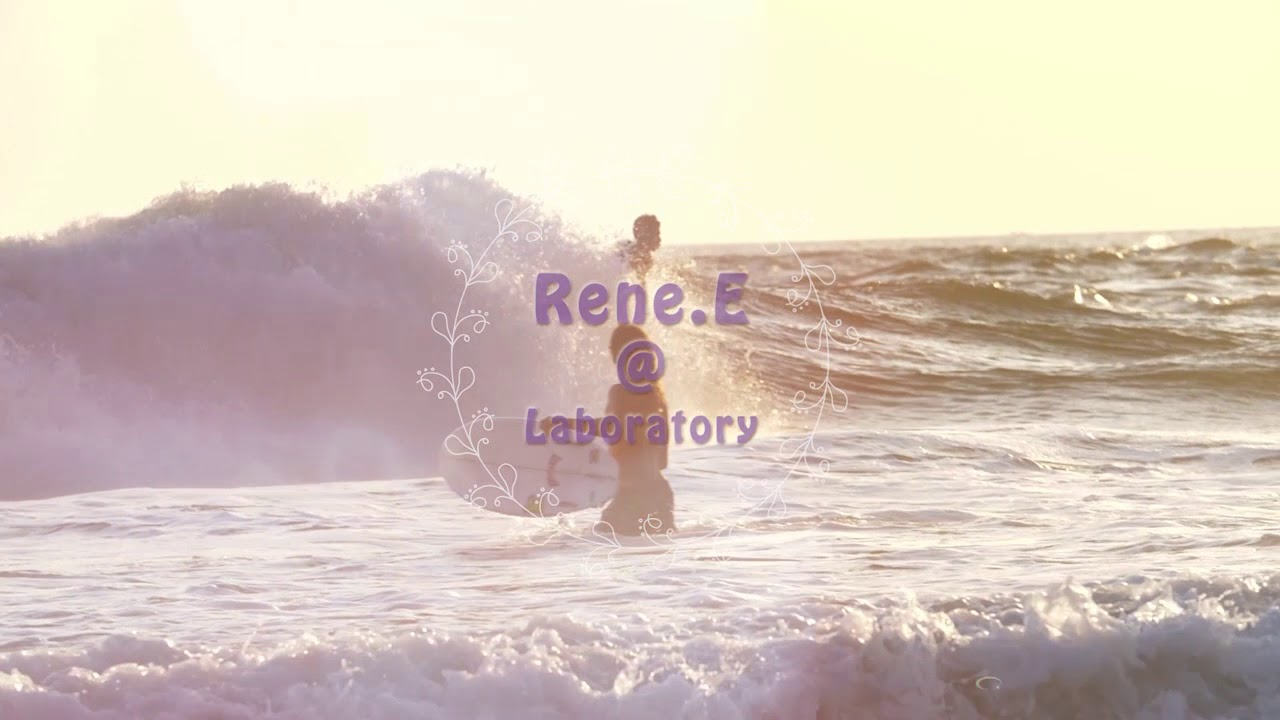 Renee Video Editor 光関係効果