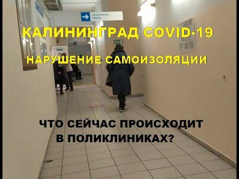 Калининград  минусы, коронавирус. Нарушение самоизоляции. Что сейчас происходит в поликлиниках.