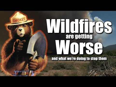 Wildfires Are Getting Worse... And What We're Doing To Prevent And Fight Them