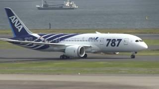 ANA Boeing 787-8 Landing at Tokyo International Airport【HND/RJTT】