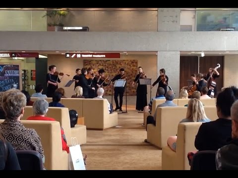 Camerata of St John's - Lunchtime Live at QPAC