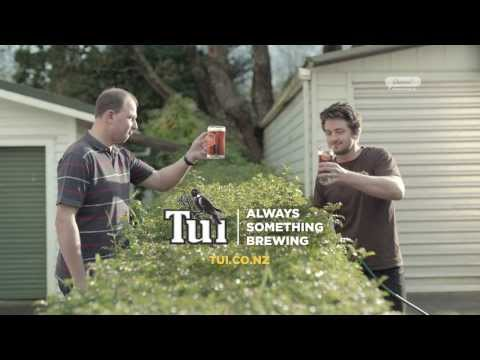 Tui Beer Plumber: Neighbours