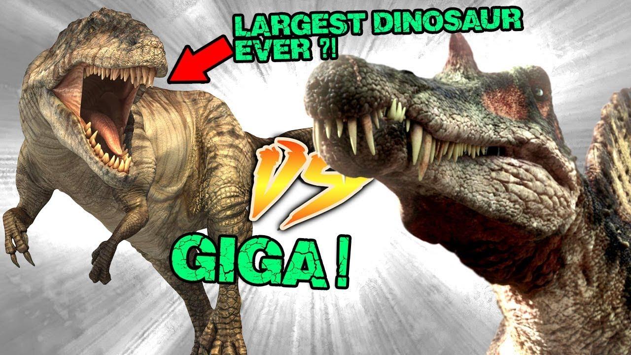 Spinosaurus VS Giganotosaurus [Who Would Win?] - YouTubeGiganotosaurus Vs Spinosaurus Who Would Win