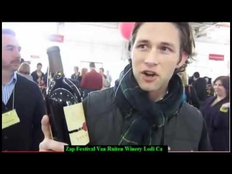 2008 Old Vine Zinfandel Van Ruiten Lodi CA Lodi Zinfandel