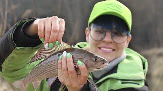 УПС... ЗДОРОВЫЕ ХАРИУСЫ на дикой реке! Рыбалка на спиннинг. #159