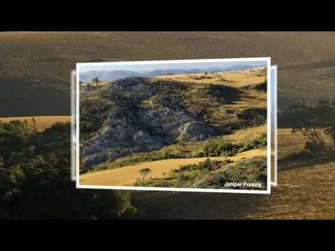 Images from Malawi and Africa, Nyika