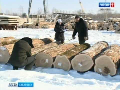 Вести-Хабаровск. Экспорт леса