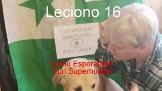 Lernu Esperanton kun Superhundo! – Leciono 16