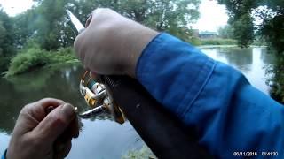 11 07 2017 Burton on Trent. Fishing. Pike. Рыбалка в Англии. Ловля щуки.