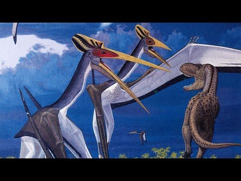 giant-prehistoric-death-storks---azhdarchids-(part-3)