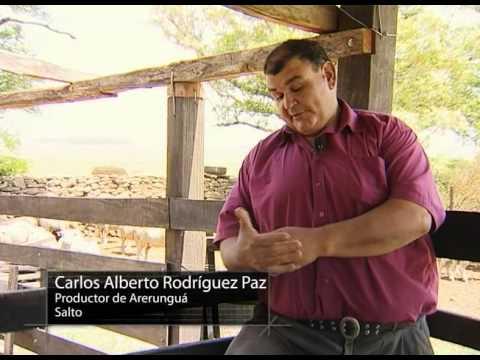 Producción agrícola familiar en Uruguay parte 1