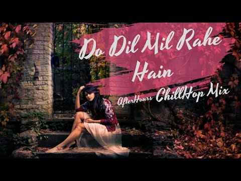 Do Dil Mil Rahe Hai - ChillHop Mix | Female Cover | Namita Choudhary | Shahrukh | AfterHours Remix