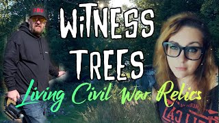 Finding the LAST Living Witnesses of the CIVIL WAR   Witness Trees