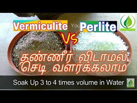 Vermiculate Vs Perlite  | Tamil |  வெர்மிகுலைட் |  பெர்லைட் | Indoor Plant|  Jai Organics