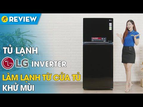 Tủ lạnh LG Inverter 393 lít: làm lạnh đa chiều, ngăn chứa lớn (GN-L422GB) • Điện máy XANH
