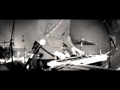 Maine Coon - Focoltone 3468  (Live @ N9)