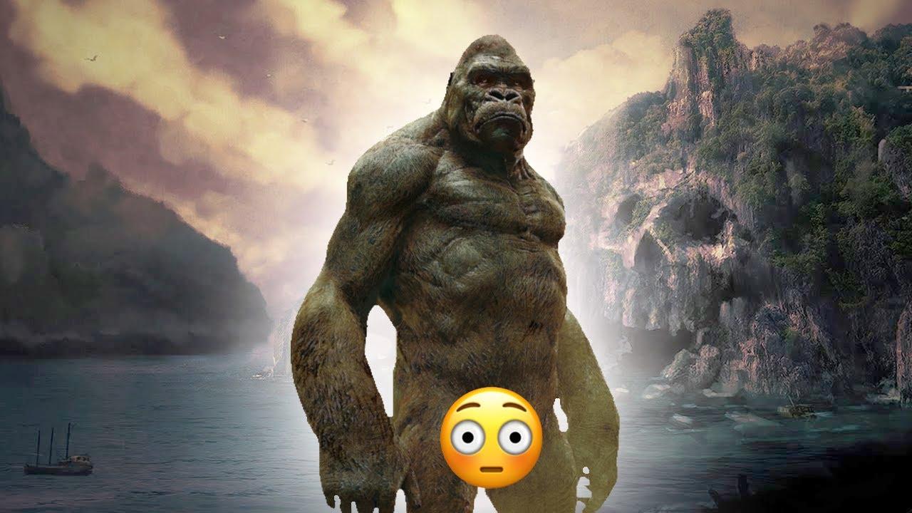 Dong King Kong